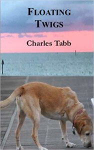 Floating Twigs by Charles Tabb